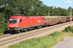 Die 1016.033 fährt mit einem gemischten Güterzug durch Unter Oberndorf Richtung Westen.